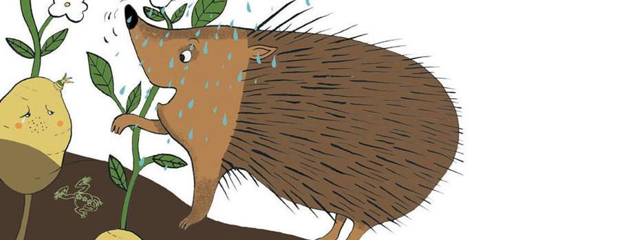 """BILLEDBOG """"Historien om den heldige kartoffel"""""""